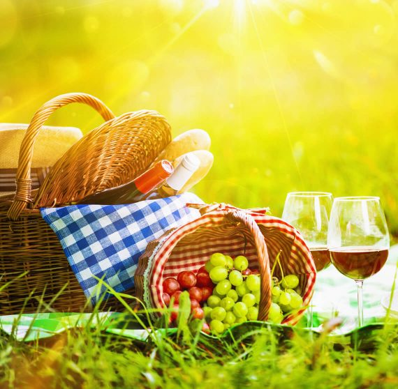 Picnic lunch with wine