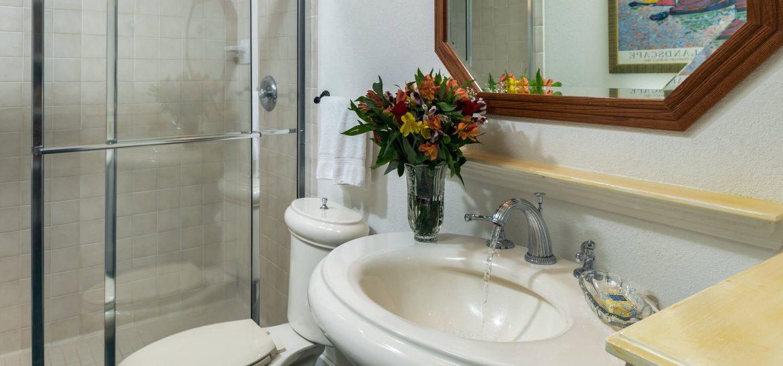 Vineyard Suite bathroom