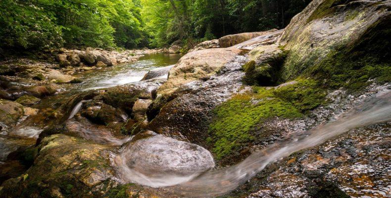 West Form River