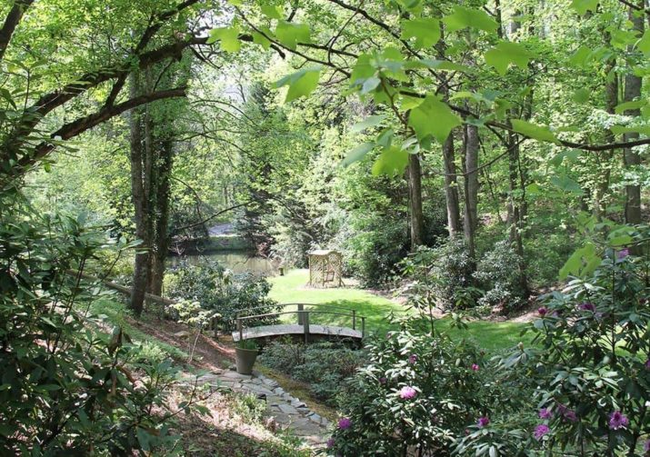 View of our grounds with bridge and swing