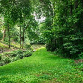 Green grounds at our Waynesville inn